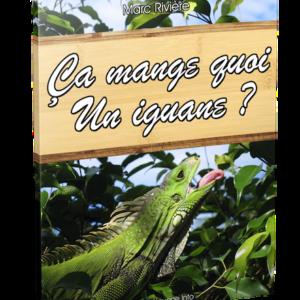 Ça mange quoi un iguane ?