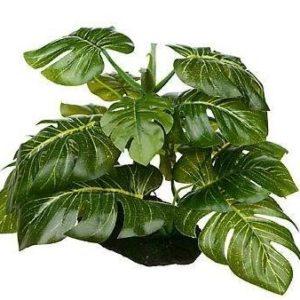 Plante en plastique pour le terrarium de votre iguane