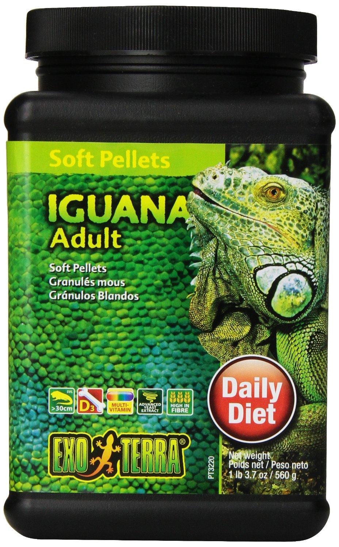 Granulés mous pour iguane adulte (marque Exoterra)
