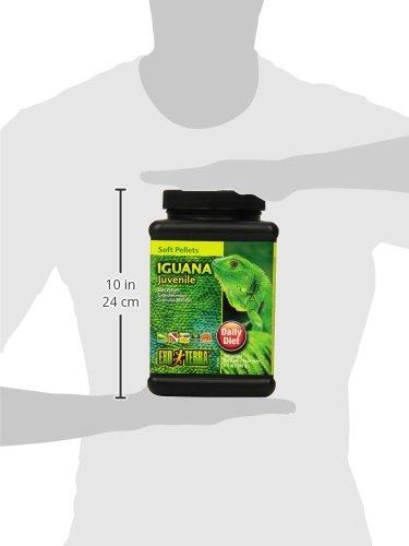 Granulé mous - Iguanes juvéniles - Taille du contenant