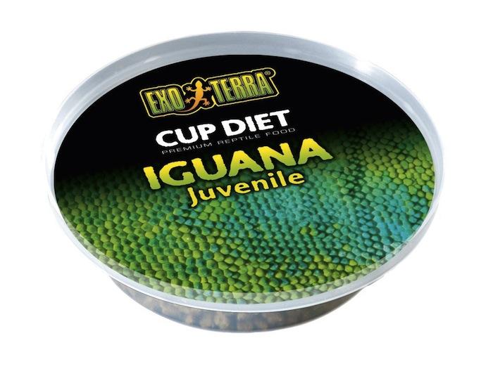 Portion quotidienne (25 grammes) de Cup Diet pour iguanes juvéniles