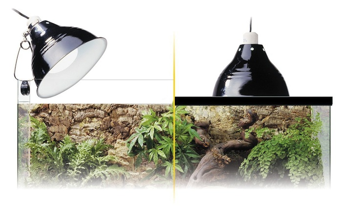 Positions possibles pour la lampe Glow Light d'Exo Terra