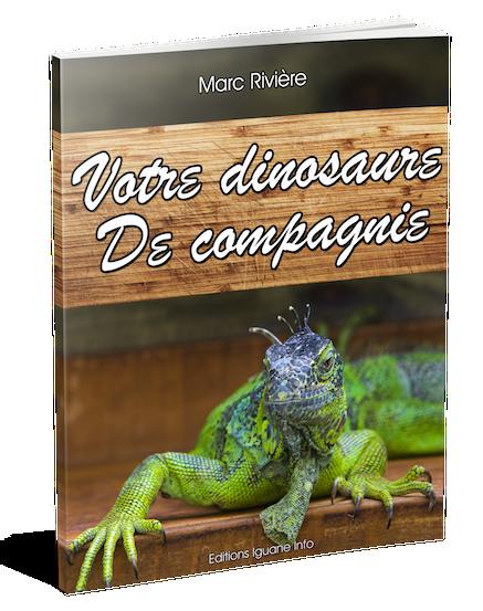 Votre dinosaure de compagnie